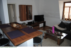 Wohnbereich mit offener Küche